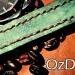 ozon1969